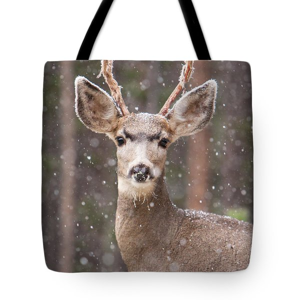 Snow Deer 1 Tote Bag