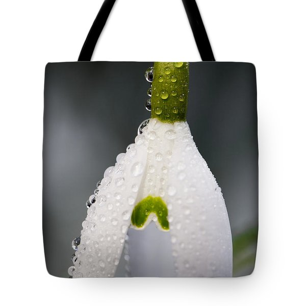 Snow Drop Tote Bag