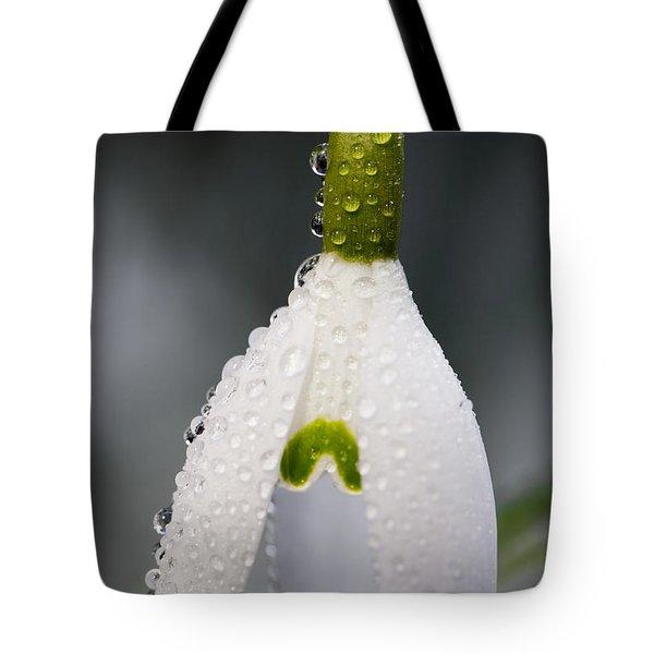 Snow Drop Tote Bag