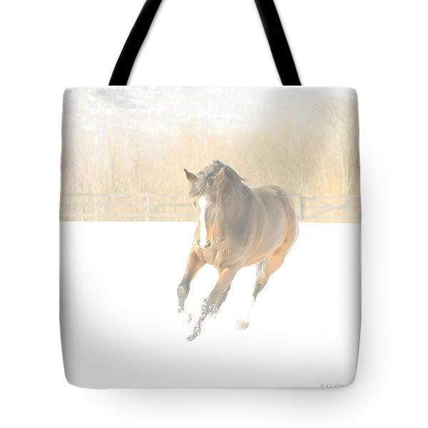 Tote Bag featuring the photograph Snow Fun by Carol Lynn Coronios