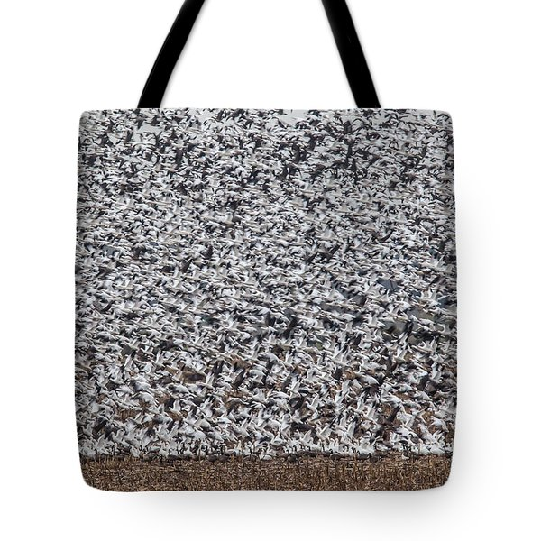 Tote Bag featuring the photograph Snow Geese by Brian Williamson