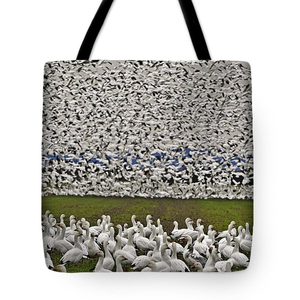 Tote Bag featuring the photograph Snow Geese By The Thousands by Valerie Garner