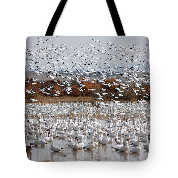 Snow Geese No.4 Tote Bag