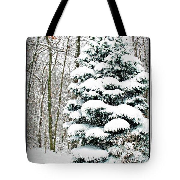 Snow In Ohio Tote Bag by Joan  Minchak