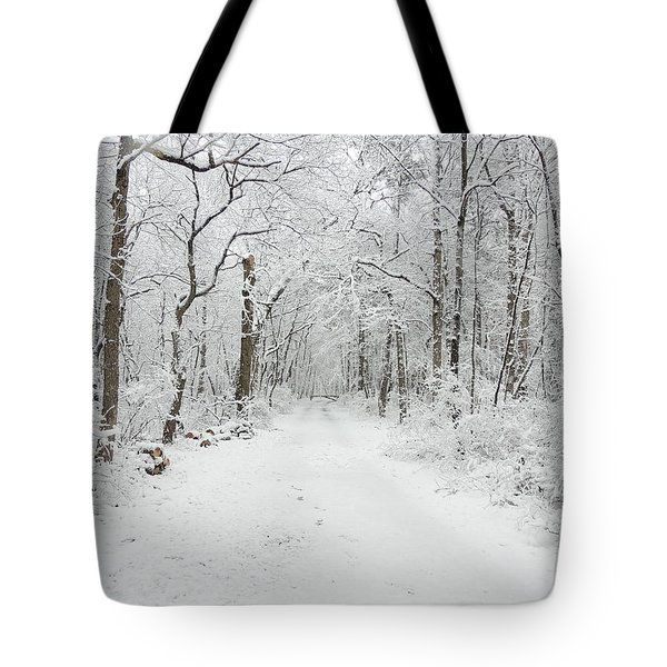 Snow In The Park Tote Bag