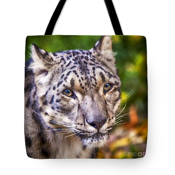 Snow Leopard 1 Tote Bag by David Millenheft