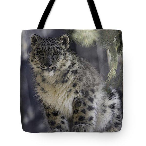 Snow Leopard 1 Tote Bag