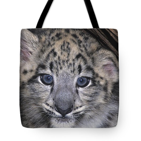 Tote Bag featuring the photograph Snow Leopard Cub Endangered by Dave Welling
