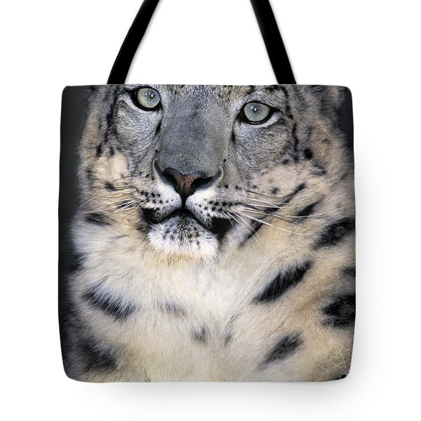 Tote Bag featuring the photograph Snow Leopard Portrait Endangered Species Wildlife Rescue by Dave Welling