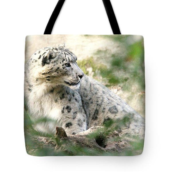 Snow Leopard Pose Tote Bag by Karol Livote
