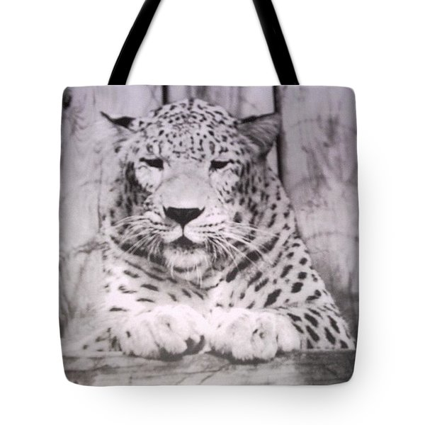 Tote Bag featuring the photograph White Snow Leopard Chillin by Belinda Lee