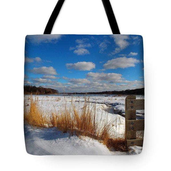 Snow Marsh Tote Bag by Dianne Cowen