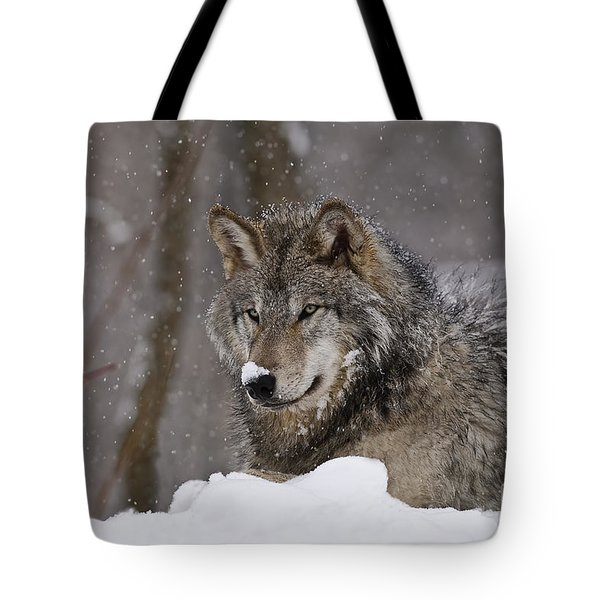 Snow Nose Tote Bag