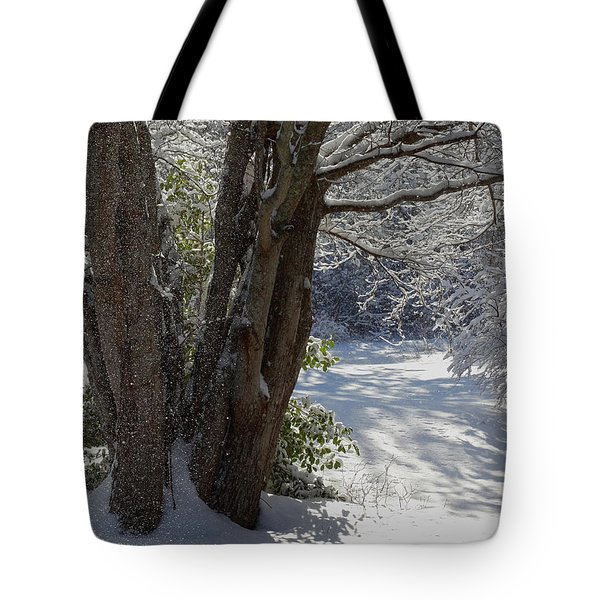 Snow Sparkles Tote Bag by Dianne Cowen