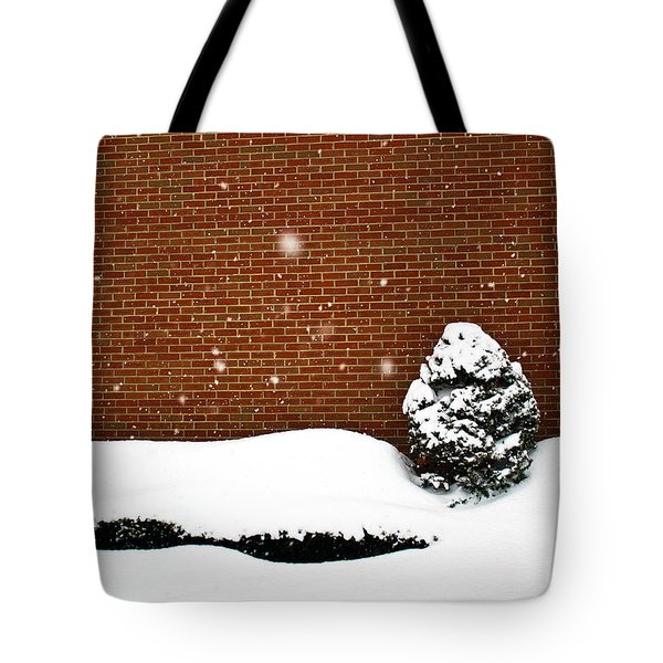 Snow Wall Tote Bag by Tim Buisman