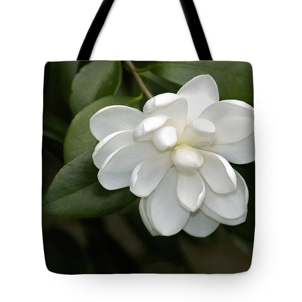 Tote Bag featuring the photograph Snow White  by Penny Lisowski