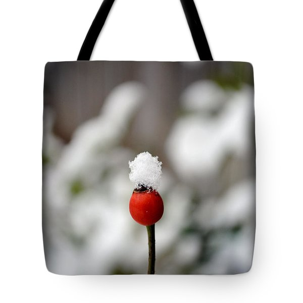 Tote Bag featuring the photograph Snowcap by Kelly Nowak