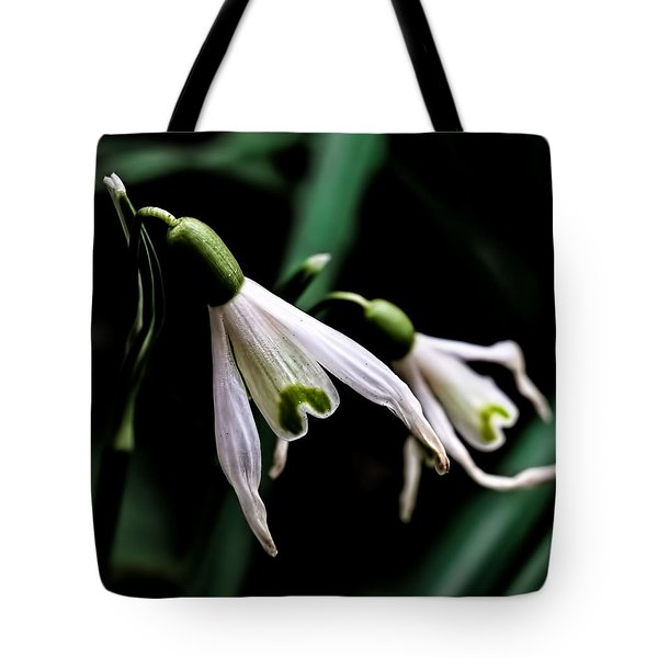 Snowdrop Tote Bag by Leif Sohlman