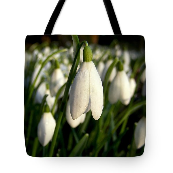 Tote Bag featuring the photograph Snowdrops by Nina Ficur Feenan