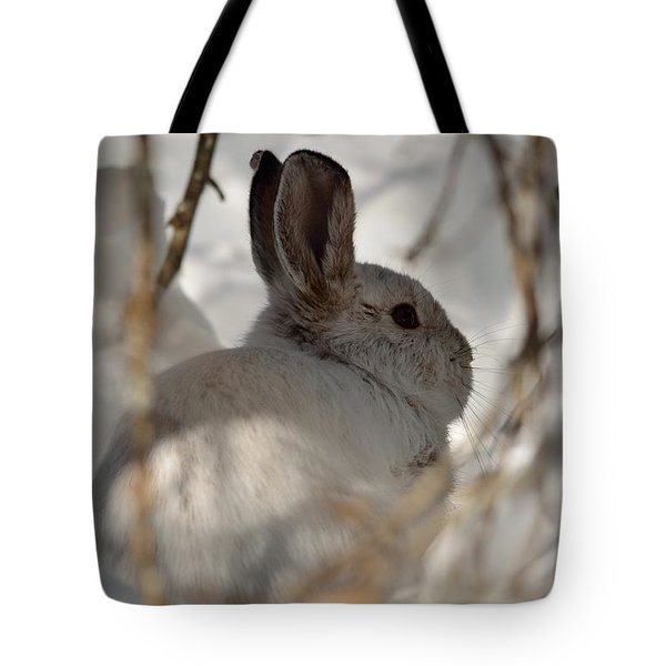 Snowshoe Hare Tote Bag by James Petersen