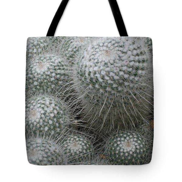 Snowy Cactus  Tote Bag