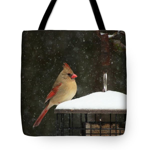 Snowy Cardinal Tote Bag by Benanne Stiens