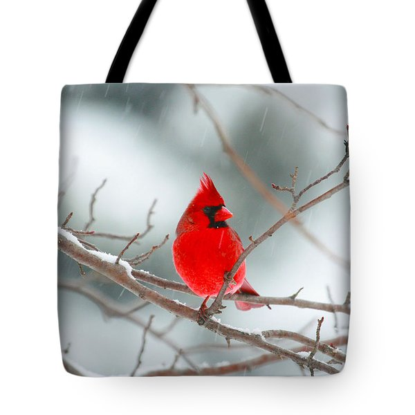 Snowy Cardinal Tote Bag
