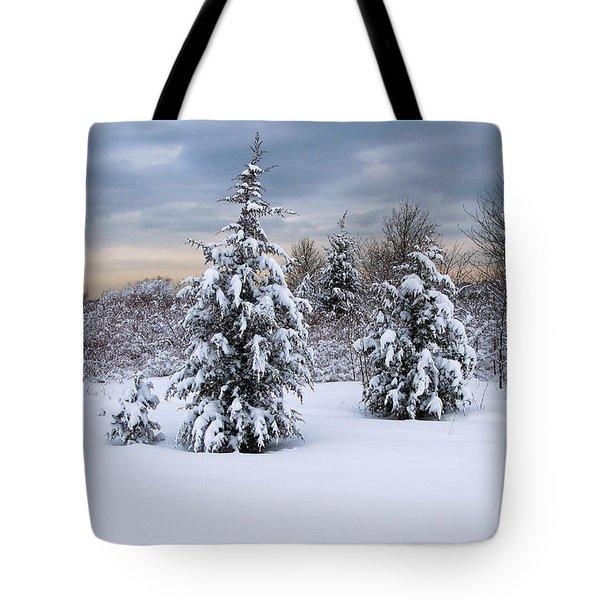 Snowy Dawn Tote Bag by Deborah  Bowie