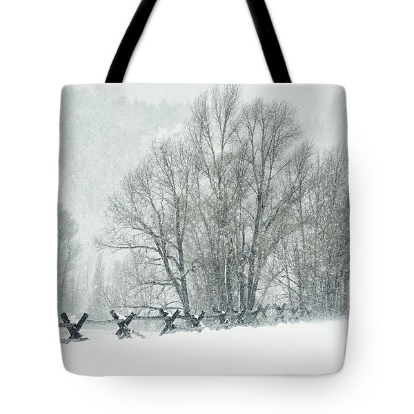 Snowy Day In The Tetons Tote Bag by Sandra Bronstein