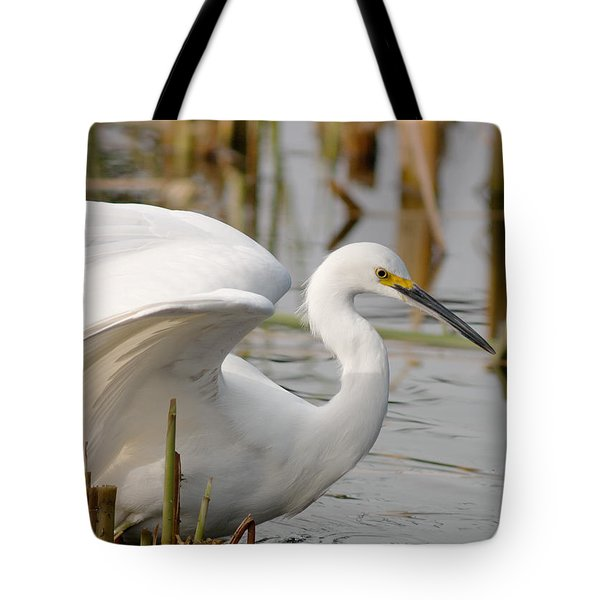 Tote Bag featuring the photograph Snowy Egret by Doug Herr