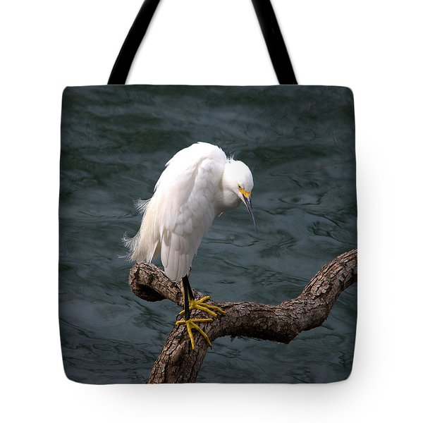 Snowy Egret Out On A Limb Tote Bag