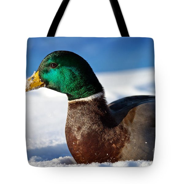 Tote Bag featuring the photograph Snowy Mallard by Eleanor Abramson