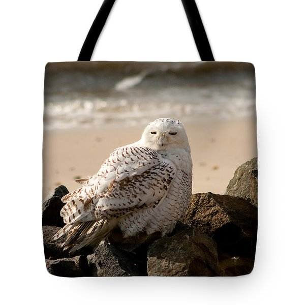 Snowy Owl At Forsythe Tote Bag