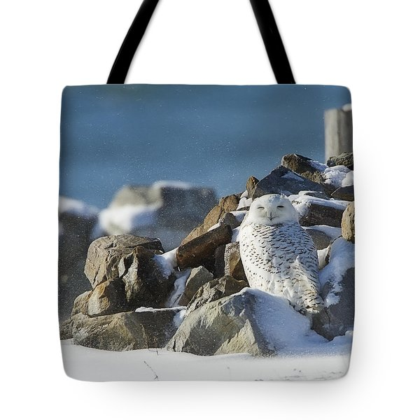 Snowy Owl On A Rock Pile Tote Bag