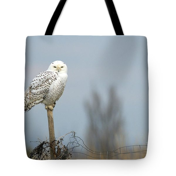 Snowy Owl On Fence Post 2 Tote Bag