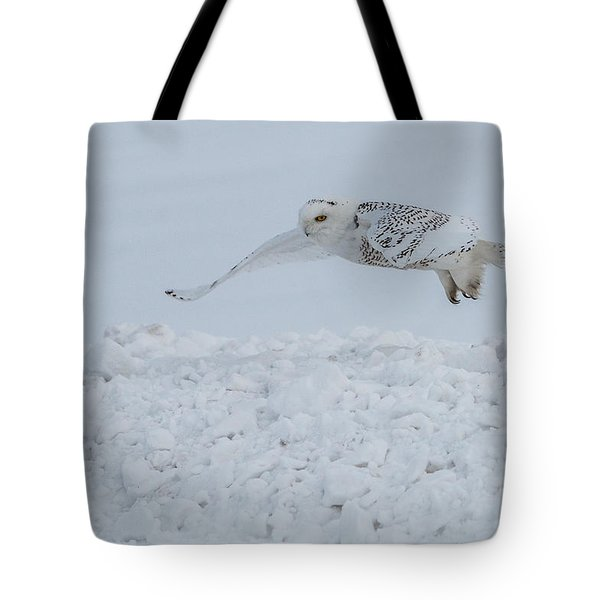 Tote Bag featuring the photograph Snowy Owl #1/3 by Patti Deters