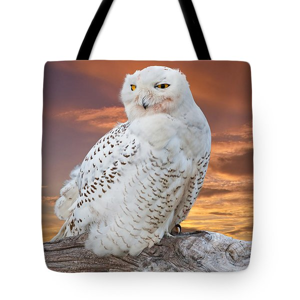 Snowy Owl Perched At Sunset Tote Bag
