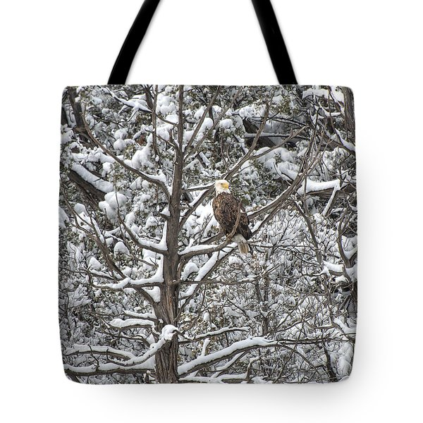 Tote Bag featuring the photograph Snowy Perch Bald Eagle by Britt Runyon