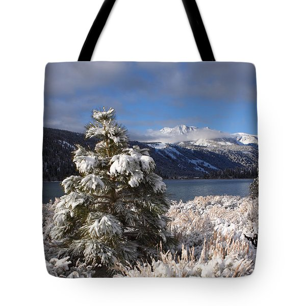 Snowy Pine  Tote Bag by Duncan Selby
