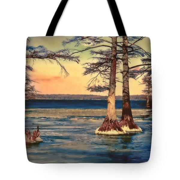 Snowy Reelfoot Tote Bag by Bonnie Willis