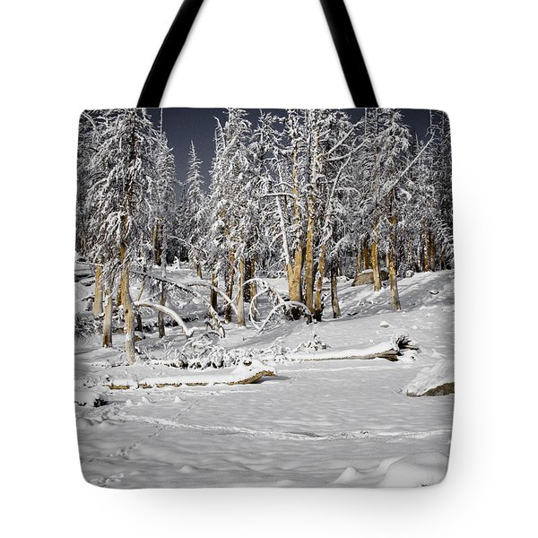 Snowy Silence Tote Bag by Chris Brannen