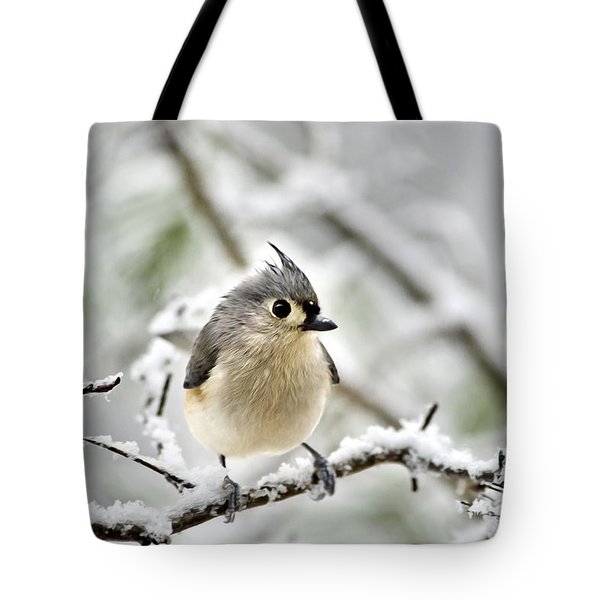 Snowy Tufted Titmouse Tote Bag by Christina Rollo