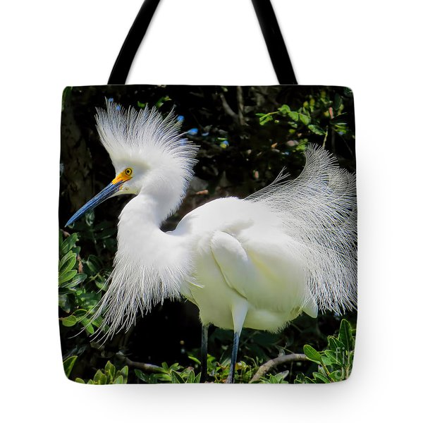 Snowy White Egret Breeding Plumage Tote Bag