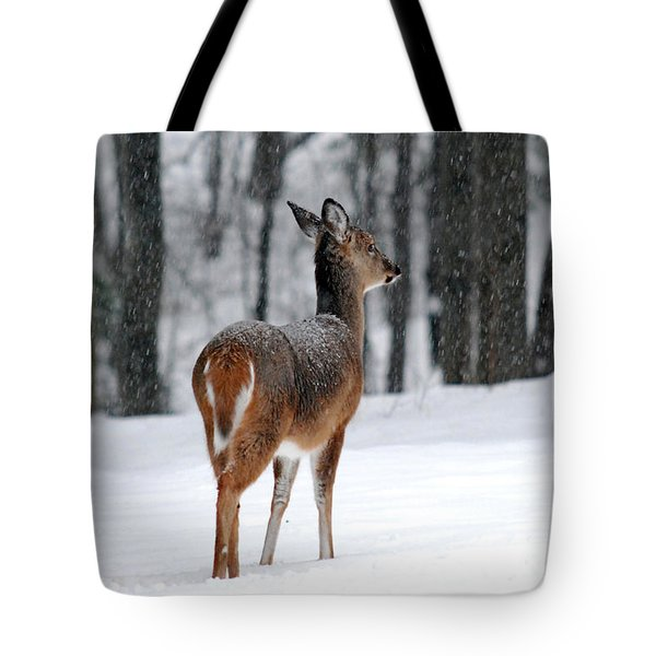 Snowy White Tail Tote Bag by Christina Rollo