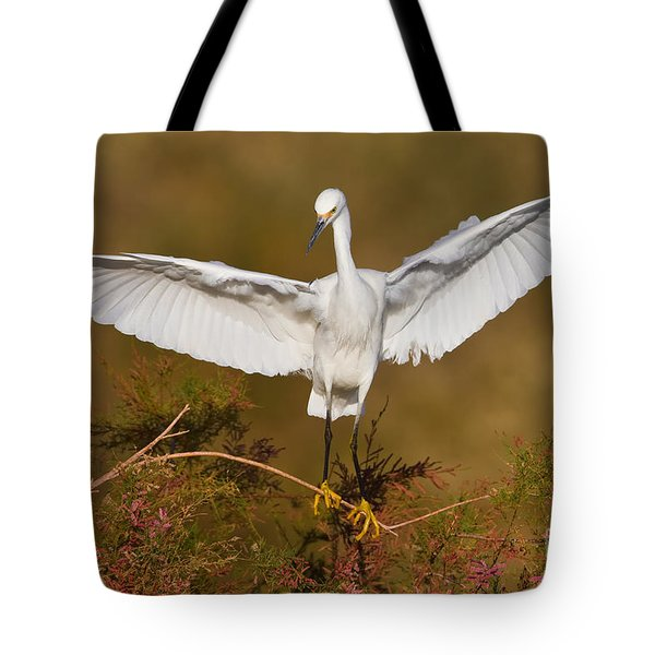Tote Bag featuring the photograph Snowy Wingspread by Bryan Keil