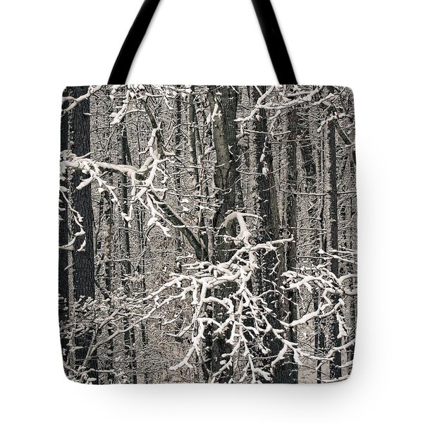 Tote Bag featuring the photograph Snowy Woods by Carol Whaley Addassi