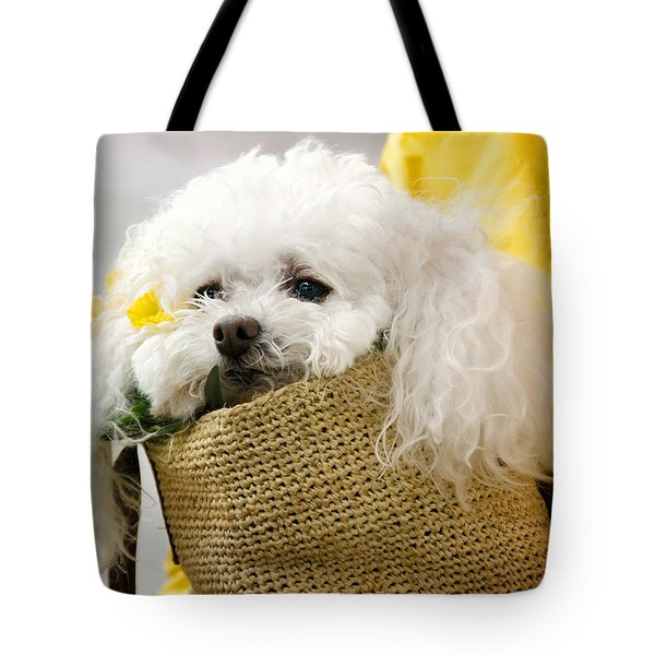 Snuggled Poodle Dog Tote Bag by Donna Doherty