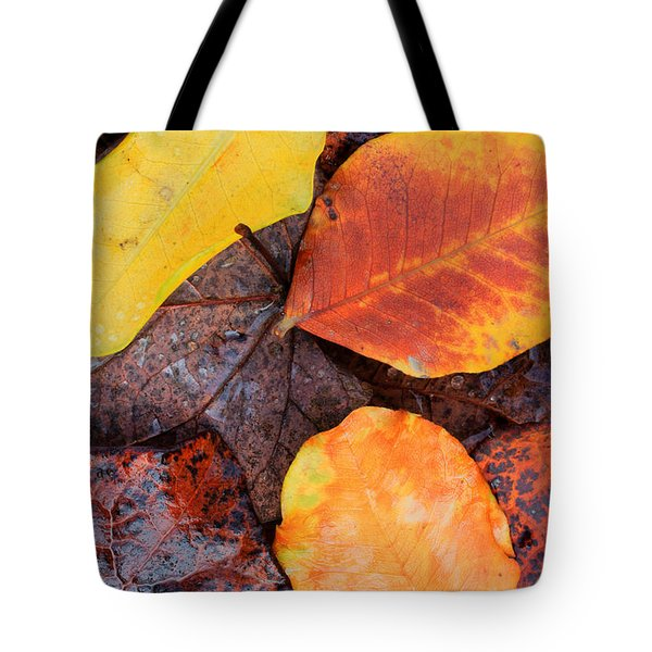 So Cal Autumn Tote Bag by Heidi Smith