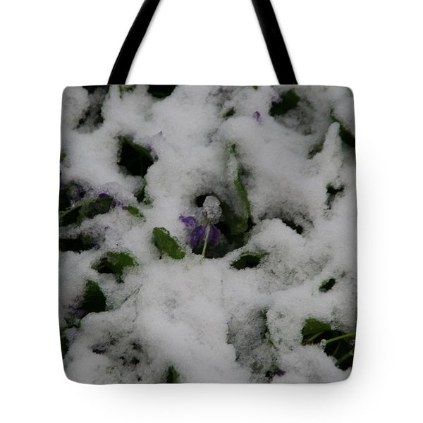 Tote Bag featuring the photograph So Much For An Early Spring by David S Reynolds