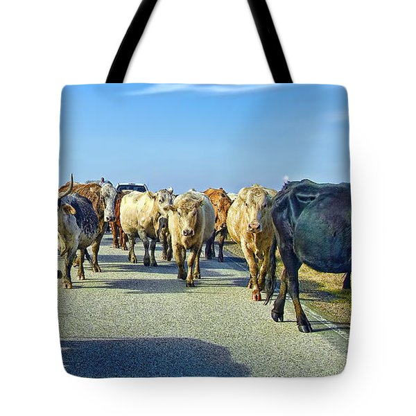 So This Is What Farm To Market Road Means - Panoramic Tote Bag by Gary Holmes
